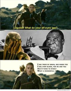 Funny pictures about What do you see Legolas? Oh, and cool pics about What do you see Legolas? Also, What do you see Legolas? Hobbit Funny, O Hobbit, Hobbit Hole, What A Wonderful World, Midle Earth, Game Of Thrones, Into The West, Harry Potter, Star Wars