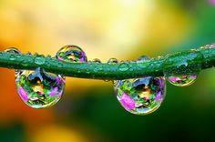 klik de gedachte: Waterdruppels