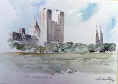 N.Y. Central Park
