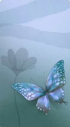 Butterfly Wallpaper, Cute Wallpapers, Plant Leaves, Butterflies, Plants, Pretty Phone Backgrounds, Butterfly, Plant, Planets