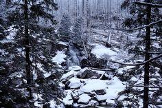 Hrebienok, High Tatras,Slovakia. High Tatras, Tatra Mountains, Lazy People, Perfect Day, Travel Tips, Hiking, Outdoor, Beautiful, Chalets