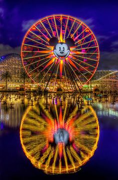 Disneyland - California Adventure. Beauty.