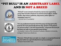 """""""Pit Bull"""" is an ARBITRARY LABEL, NOT A BREED 