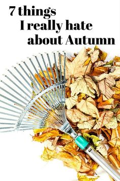 The fall is a beautiful season, but there are quite a few things that I dislike. Here is a list of 7 things I hate about autumn. Springtime Quotes, Hello Autumn, Autumn Fall, Fall Snacks, Fall Cocktails, Daylight Savings Time, Least Favorite, Pumpkin Spice, Sunny Days