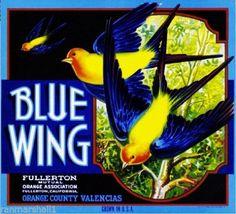 Fullerton CA, Blue Wing Brand fruit crate label