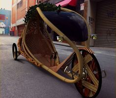 bamboo reclining bicycle. so cool.