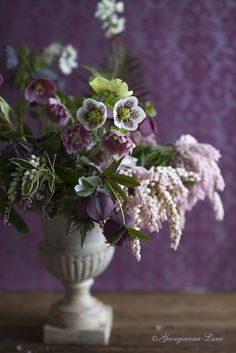 ❥ From our woodland garden by Georgianna Lane