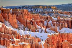 Bryce Canyon, Utah - winter