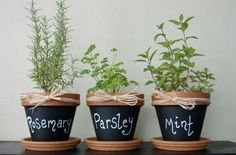 Clay Pots painted with chalkboard paint! So easy to do. My girls want to make an indoor garden. This is perfect. :) such a cute idea for your herbs pots! Hobby Design, Diy Design, Design Ideas, Interior Design, Herb Pots, Herb Planters, Garden Pots, Balcony Garden, Clay Pot Crafts