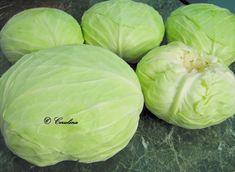 Varza congelata pusa la murat by Cerulina – cerulina Cabbage, Vegetables, Food, Bedroom, Canning, Fine Dining, Veggies, Vegetable Recipes, Meals