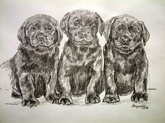 """'Lab  puppies Original pencil matted 14""""x16""""' is going up for auction at  3pm Thu, Jul 25 with a starting bid of $10."""