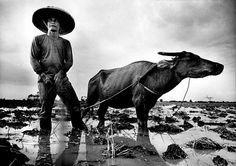 pulitzer prize photos | Kim Komenich won the 1987 Pulitzer Prize for spot news photography for ...