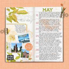 Journaling for Week 21
