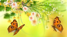 Vector flowers, butterfly, design wallpaper 1920x1080 Full HD