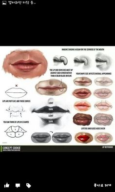 drawing Illustration art lips tutorials human anatomy art reference how to draw Drawing Tutorials character design reference art lesson anatomy for artists human anatomy reference