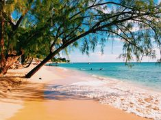 The gorgeous tropical island is hoping people will work from home in paradise by traveling back to this vacation spot late summer.