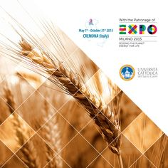 From May 1st until October 31st 2015, Università Cattolica del Sacro Cuore is organizing a program of one week long international Executive Courses. Discover www.cremonafoodvalley.com - #Cremona #CEEP #Expo2015