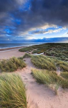 Balmedie Beach during a May sandstorm, Scotland