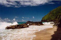 Kauai wordt algemeen beschouwd als het mooiste eiland van de Hawaii-archipel en dat wil toch wat zeggen. Bepaalde delen van het vulkanische eiland werden gebruikt als decor voor de film Jurassic Parc.