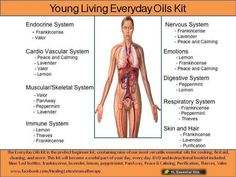Young Living Oils:--- Click to sign up as a distributor (member) to get wholesale pricing! Comment to contact me for assistance or info! https://www.youngliving.com/signup/?sponsorid=1679434enrollerid=1679434