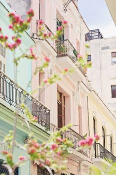 Beautiful Havana                                                                                                                                                                                 More