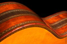 Великолепные макро-фотографии животных, растений, и ... музыкальных инструментов. Фотограф подметил гармоничность форм, симметрию, и великолепие красочной палитры.