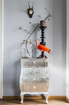 interior taxidermy bird