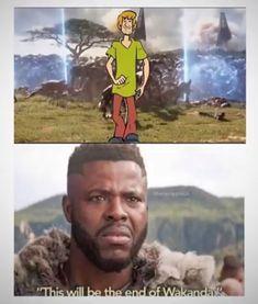 155 New meme compilation LOL Best Memes, Dankest Memes, Funny Memes, Funny Quotes, Jokes, Funny Animal Memes, Funny Animals, Scooby Doo Memes, Evolution Of Memes