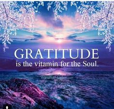 Gratitude is the vitamin for the soul. Amen for my gratitude and my enriched soul. Deep Relationship Quotes, Motivacional Quotes, Life Quotes, Yoga Quotes, Heart Quotes, Positive Thoughts, Positive Quotes, Attitude Of Gratitude Quotes, Gratitude Quotes Thankful