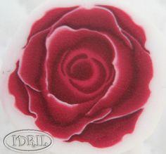 cane rose rouge_r10