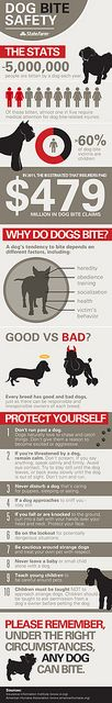 Dog Bite Safety Infographic - Vertical by #State Farm, via Flickr