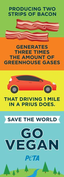 A reminder to our LA & Phoenix friends while they're at the electric car charging staion! #MeatsNotGreen #EarthDay #GoVegan