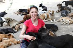 400 Dogs Will Never Go Hungry Again