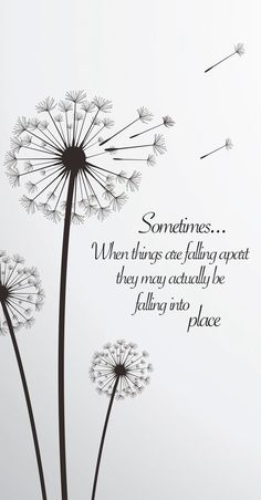 """Quote: Sometimes when things are falling apart. - """"Sometimes when things are falling apart they may actually be falling into place. Dandelion Quotes, Dandelion Tattoo Meaning, Dandelion Tattoo Design, Sunflower Quotes, Falling Apart Quotes, Life Falling Apart, Great Quotes, Love Quotes, Positive Quotes"""