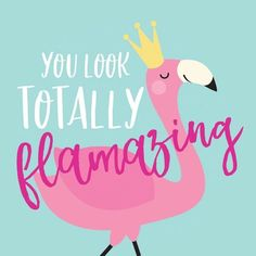 Flamazing flamingo