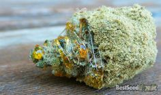 How to Make Moon Rock Weed, Moon Rocks Weed is amongst the strongest forms of cannabis available on the market. It is very easy to make the and here is the