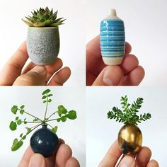 New Miniature Hand-Thrown Ceramics and Equipment by Jon Almeda (Colossal) Ceramic Pots, Ceramic Pottery, Pottery Art, Cactus, Pottery Techniques, Pottery Designs, Modern Ceramics, Ceramic Artists, Clay Projects