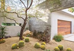 It's time to get the backyard in great shape for spring, and water-wise native plantings are the best option. Gain inspiration from the following drought-friendly landscapes.