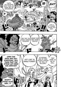 One Piece 806 - Page 14 - Manga Stream