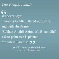 Islamic Quotes: Photo