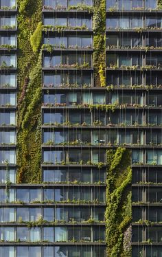 Vertical Garden, One Central Park - Atelier Jean Nouvel, Australia