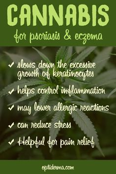The Benefits of Cannabis for Psoriasis & Eczema. In my search for natural remedies for psoriasis, I stumbled upon cannabis as a potential candidate for alleviating the symptoms associated with this skin condition. Despite its shaky reputation, using cannabis as a natural remedy has been found to be very effective in some cases. cautious: cannabis may improve your skin, but not if you smoke it! Read more: http://www.optiderma.com/articles/cannabis-psoriasis-eczema/