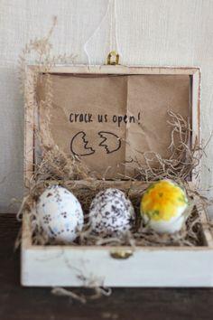 Regalar dinero en una boda utilizando huevos de Pascua