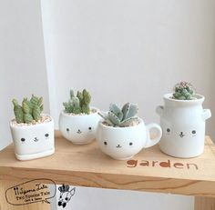 Vasos Cacti And Succulents, Planting Succulents, Potted Plants, Cactus Plants, Indoor Plants, Planting Flowers, House Plants Decor, Painted Pots, Flower Pots