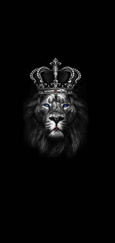 Lion King wallpaper by NIRAVGAJJAR1711 - 09 - Free on ZEDGE™