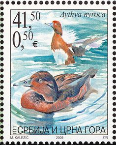 Ferruginous Duck stamps - mainly images - gallery format