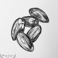 almond sketch