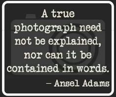 "Photography Quotes : QUOTATION – Image : Quotes Of the day – Description ""A true photograph need not be explained…"" ~Ansel Adams — Click through for more photography quotes you should know. Sharing is Caring – Don't forget to share this. Quotes About Photography, Photography Business, Love Photography, Minimalist Photography, Photography Lessons, Photo Quotes, Me Quotes, Daily Quotes, Photographer Quotes"