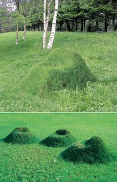 Oh my god, grass chairs. Sutainable landscape, yesssss please! Landscape Architecture, Landscape Design, Garden Art, Garden Design, Natural Playground, Outdoor Classroom, Outdoor Learning, Outdoor Chairs, Lawn Chairs