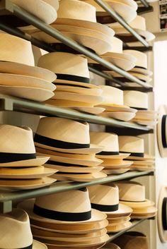 Panama Hats - Newt